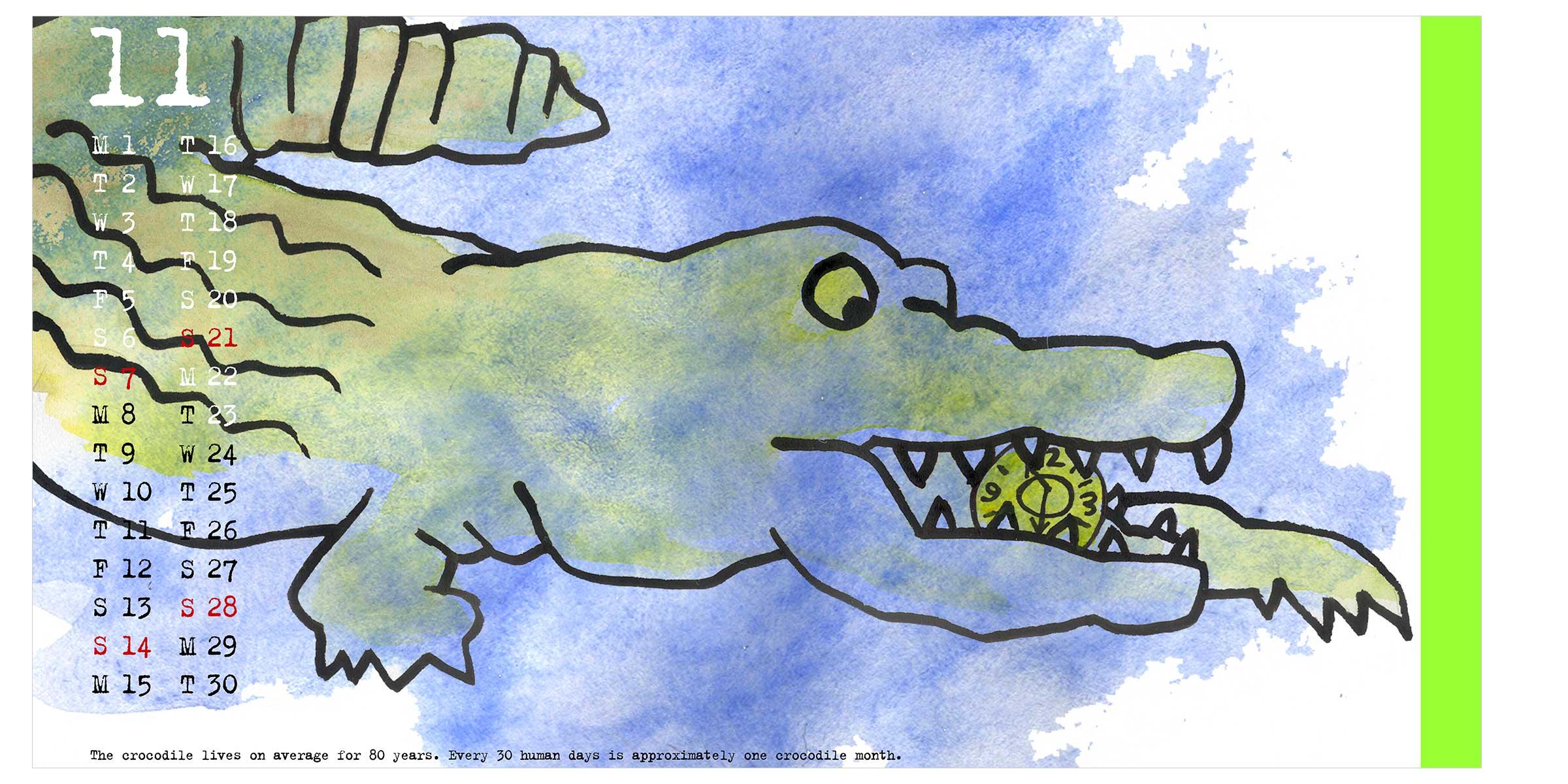 MMI-AC-croc